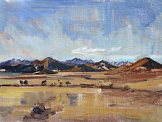 Clem St John Webster<br>The Namibia Desert